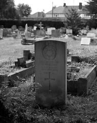 CWGC Marine H W Blake Royal Marines (IanAWood) Tags: bringoutthedead cemeteryclub citiesofthedead graveyards headstonehunting lbofrichmond londonsdead londonsnecropolis londonsvictoriancemeteries nikkorafs58mmf14g nikondf twickenham twickenhamburialboard twickenhamcemetery walkingamongstthedead walkingwithmynikon