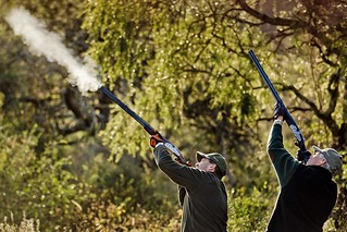 Argentina Luxury Dove Hunting 30