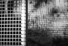 Schatten seiner selbst (chipsmitmayo) Tags: minolta xd7 rokkor 50mm f14 adox adotech cms 20 film analog entwickelt selber selbstentwickelt schwarzweiss blackandwhite bw münster westfalen zoo allwetterzoo tiere animals bank bench schatten shadow gitter boden