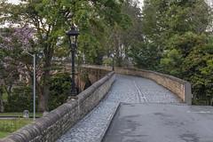 Puente El Humilladero (José M. Arboleda) Tags: puente elhumilladero arco camino carretera calle salidadelsol amanecer nube cielo árbol arquitectura ciudad parque popayán colombia canon eos 5d markiv ef24105mmf4lisusm josémarboledac