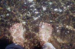 not yet (.grux.) Tags: asahipentaxsv helios44258mmf2 m42 film fujicolor100 expiredfilm sunnyf16 water ripples feet pebbles beach cold sparkles lakeontario torontoisland toronto