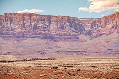 Home, Home On The Range (campmusa) Tags: desert arizona cowboys mountain plains highdesert vermillioncliffs us89a kaibabplateau redrock