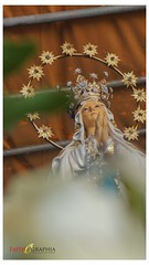 Frisco Grand Marian Exhibit 2018 (Faithographia) Tags: faithographia faithography frisco gme marianevents marianexhibit bvm virginmary avemaria maria