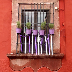 perky purple pails and ribbons (msdonnalee) Tags: window ventana janela fenster finestra fenêtre bucket ribbon windowframe mexico mexique mexiko irongrill
