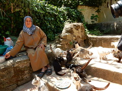 Chellah, the cat and eel lady (Mulligan Stu) Tags: woman eel somebodyelse'scat locallegund eellady catlady cigogne phoenician laclac maroc morocco berber rabat marinid stork romanruins almohad phoenicianruins roman chellah cat unesco
