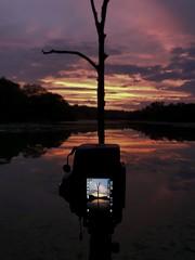 BTS of tonight's sunset (the_lowe_life) Tags: photography bts glow kentuckykicksass georgetown outdoors hike iphone d610 reflection lake tree nikon sunset