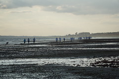 Runners on Meon Shore at low tide (Chris@YellowMopArt) Tags: runners beach coast solent southampton water low tide