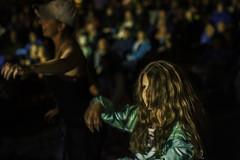 Folk Fest Audience 16