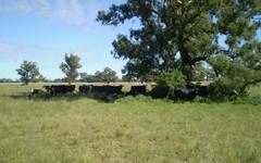 . Albury Road, Urana NSW