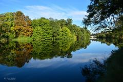 DSC_7489 (Eric RIFLET) Tags: touraine france indreetloire loirevalley river blue sky landscape veretz tree valléedelaloire
