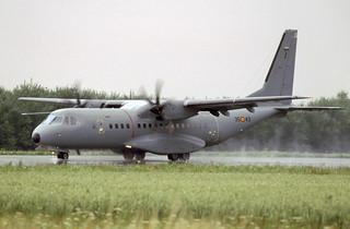 C.295M