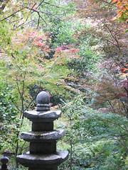 a (42) (hiromi89) Tags: japan beauty beautiful scenery flower wood pond