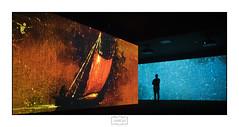 Jardín infinito/ Infinite garden . Museo de Bellas Artes de Bilbao (Jose Antonio. 62) Tags: bilbo bilbao museum museo exposición exhibition colours colores silhouette silueta