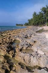 Kawela Beach North Shore Oahu HI (Fletch in HI) Tags: nikon d5600 tamron 16300 oahu hawaii northshore water ocean sand rocks trees hoyaredintensifierfilter sky clouds