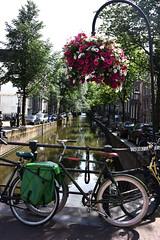 Amsterdam 365 (BGS Fotografia) Tags: amsterdam holanda holand maxima europa paisesbajos europe canals canales bicicleta bike