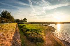 Veere (Omroep Zeeland) Tags: bastion veere avond zon zonsondergang natuur dieren koe