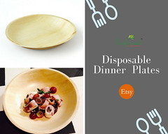 Disposable Dinner Plates (palmleafecofriendlyproducts) Tags: plates bowls etsy etsyshop onlineshopping ecofriendly arecaplates palmleafplates naturalplates