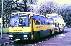 Slide 120-28 (Steve Guess) Tags: brighton east sussex england gb uk bus coach eastern national leyland tiger alexander te hhj377y