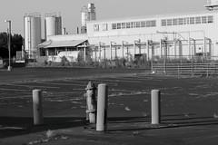 Abandoned Parking Lot and Factory (N.the.Kudzu) Tags: suburban atlanta georgia abandoned parkinglot factory canondslr primelens canoneflens bw