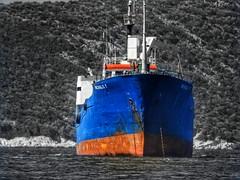 Michalis 1..waiting outside the bay (panoskaralis) Tags: ships cargoship vessel blue bluesea coastline sea seaview seascape aegean aegeansea lesvos lesvosisland mytilene greece greek hellas hellenic nikonb700 nikon nikoncoolpixb700