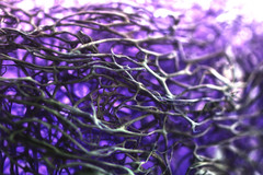Magical mesh... (victoriameyo) Tags: purple mesh macromondays net violet macro details bright abstract object waves texture web tangle