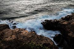 IMG_0291b (ale210708) Tags: mare sea livorno leghorn toscana tuscany italia italy romito boccale