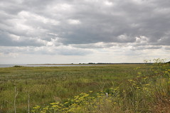 Pegwell Bay Country Park 1673 (Kent Country Parks) Tags: summer autumn spring pegwellbay country countryside kentcountryparks kent