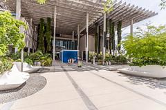 IMG_3646.jpg (patrick t ngo) Tags: architecture downtownmiami herzogdemueron miami museum museumpark pamm pérezartmuseummiami