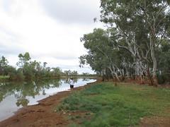 A billabong Nth of Meekatharra WA (spelio) Tags: australia remote wa western june 2011 pilbara travel