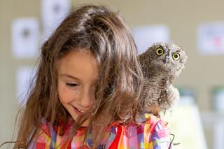 Girl with a western screech owl