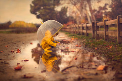 After The Rain ({jessica drossin}) Tags: jessicadrossin child rain boots umbrella leaves leaf puddle reflection fence trees childhood kids boyhood boy alone natural light wwwjessicadrossincom sprinkles park path dirt wet clear yellow