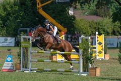 A9909141_s (AndiP66) Tags: springen langenthal 2018 5august2018 august pferd horse schweiz switzerland kantonbern cantonberne concours wettbewerb horsejumping equestrian sports springreiten pferdespringen pferdesport sport sony alpha sonyalpha 99markii 99ii 99m2 a99ii ilca99m2 slta99ii sony70400mm f456 sony70400mmf456gssmii sal70400g2 amount andreaspeters