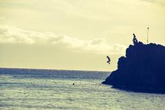 DSC_0131 (Seán Creamer) Tags: maui hawaii kaanapalibeach usa beach aloha blackrockbeach cliffdiving sheraton