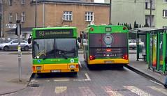 MAN NL202 #1025 + Solaris Urbino 12 #1614 (xjr1) Tags: poznań poland mpkpoznań man bus górczyn nl202 1025 solaris urbino12 1614