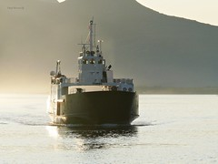 """Tomma"" (OlafHorsevik) Tags: ferge ferga ferry ferja ferje boreal helgelandske tomma nesna rv17 fv17 kystriksveien"