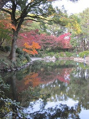 a (64) (hiromi89) Tags: japan beauty beautiful scenery flower wood pond