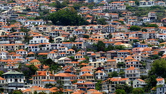 Crowded ? Mosaic ? (Le.Patou) Tags: madère madeira funchal city town hill mosaïque mosaic hillside roof effect fz1000 suburb filter mountain