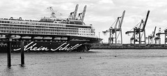 2 Paddler & Mein Schiff... (Hans_59) Tags: hamburg hafen harbour harbor port kontraste contrasts ship elbe containerterminal sw monochrome blackwhite blackandwhite bnw bw400cn kodak kodakbw400cn expired 35mm analog film