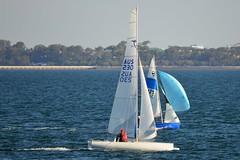 800_4965 (Lox Pix) Tags: queensland qld australia catamaran trimaran hyc humpybongyachtclub winterbash loxpix foilingcatamaran foiling bramblebay sailing race regatta woodypoint boat