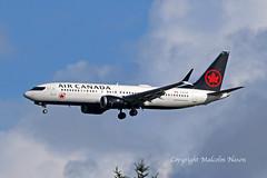 B737 MAX8 C-FTJV AIR CANADA (shanairpic) Tags: jetairliner passengerjet b737 boeing737 shannon max8 aircanada cftjv