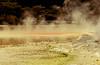 Champagne Pool Tai-O-Tapu New Zealand (annewilson12) Tags: newzealand northisland rotorua waiotapu thermal geothermal thermalwonderland steam travel travelphotography nikond5500