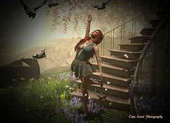 The Elusive Bird of Romance (cejalaval) Tags: secondlife sl style slfashionblogger slphotography shadows slfashion slshopping fashion firestorm freckles fashionblogger fashionblogging fashionblog fitmeshplaza avatar aviglam allure redhead romance tonic tattoo truth laq 7deadlyskins mesh mystictimbers pose pinup windlight lw luanesworldposes realevil blog bento birds