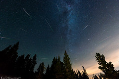 Exercise in Sleep Deprivation: Perseids 2018 (Bill Bowman) Tags: perseidmeteorshower meteorshower shootingstar fallingstar elkmeadow mountainresearchstation andromedagalaxy milkyway stars