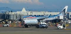 Wild Alaska Seafood (afagen) Tags: washingtonstate seatac seattle–tacomainternationalairport seattletacomainternationalairport airport sea airplane alaskaairlines boeing737890wl boeing737 boeing 737 n559as