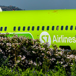 S7 Airlines thumbnail