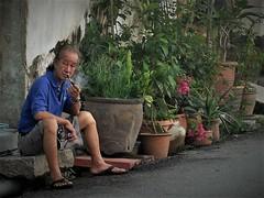 enjoying a smoke (SM Tham) Tags: asia southeastasia malaysia penang island georgetown unescoworldheritagesite lebuhklang man smoking pipe pots plants lane alley doorway