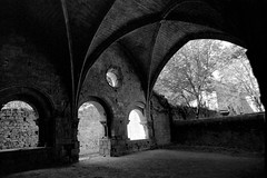 Salle capitulaire de l'abbaye d'Alet-les-Bains (Philippe_28) Tags: aletlesbains aude languedoc france europe 11 24x36 argentique analogue camera photography film 135 bw nb abbaye abbey alet