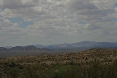 Rt 66 Lake Havasu to Cali (Strollin' Dolin) Tags: lake havasu arizona rt 66 desert