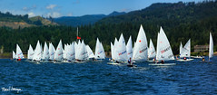 2018 Laser Pacific Coast Championship--(pano lens blur) 1 (SailingPDX) Tags: 2018 august bridgeofthegods columbiagorgeracingassociation columbiariver laser oregon saturday racing sail sailboat cascadelocks unitedstates us