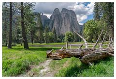 Yosemite Valley (Paulemans) Tags: paulderoode paulemans 2018usavacation yosemitevalley yosemitenationalpark sonyfe424105goss yosemite nikvivenza